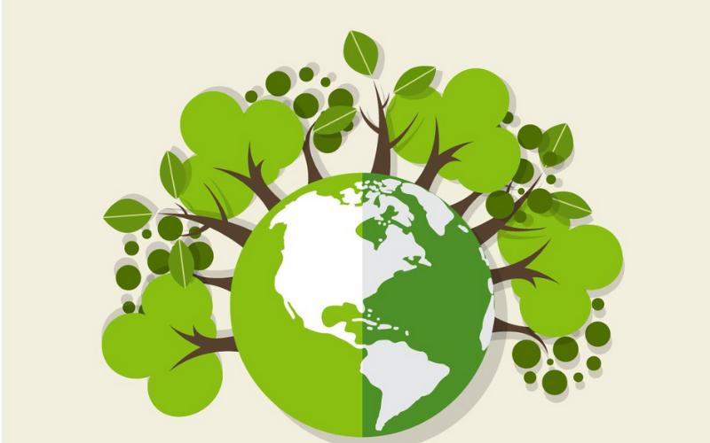 Práticas ecológicas para seu delivery