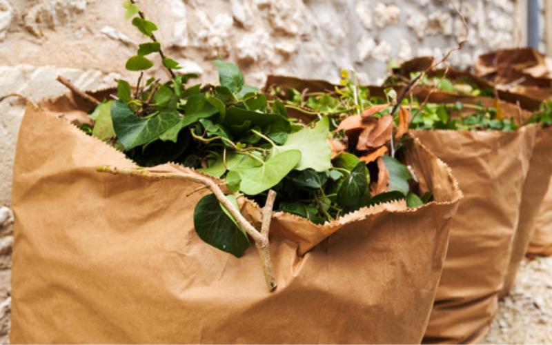 Gestão de resíduos: seu restaurante precisa de uma